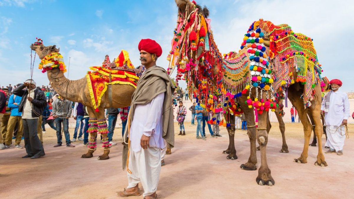 Rajasthan Pushkar Camel Fair Tour 2019 | Pushkar Camel Fair 2019