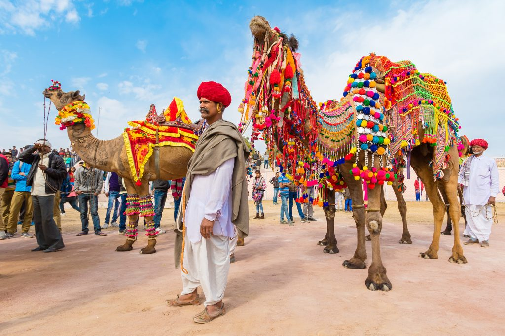 Pushkar Csmel Fair