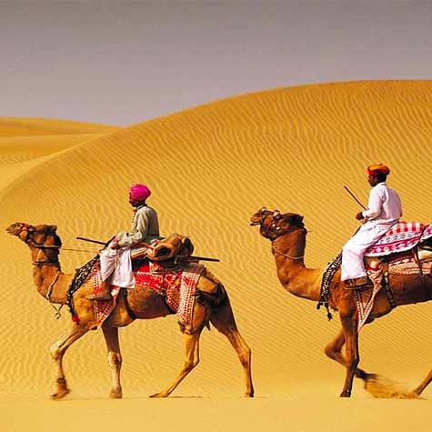Camel Safari Tour package of Rajasthan